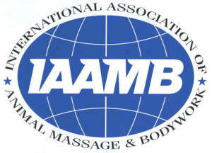IAAMB Approved Provider