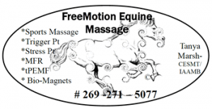 Free Motion Equine Massage