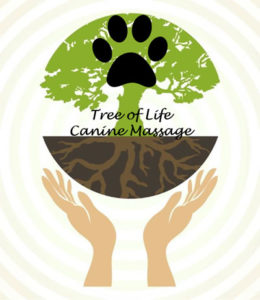 Tree of Life Canine Massage